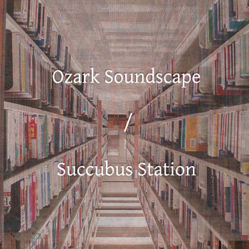 split with Succubus Station cover art