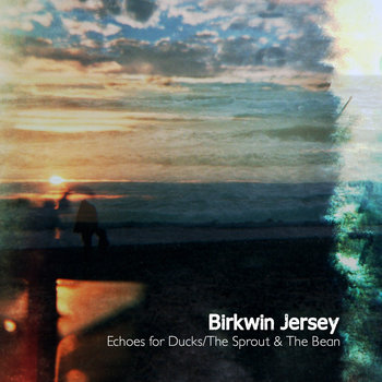 """Echoes for Ducks"" b/w ""The Sprout & The Bean (Joanna Newsom Cover)"" cover art"