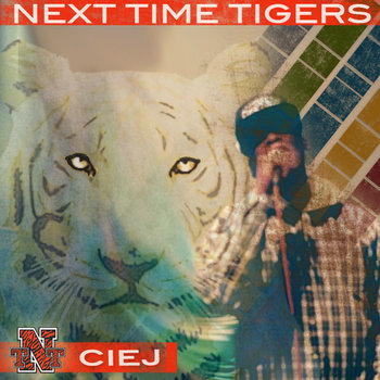 Next Time Tigers cover art