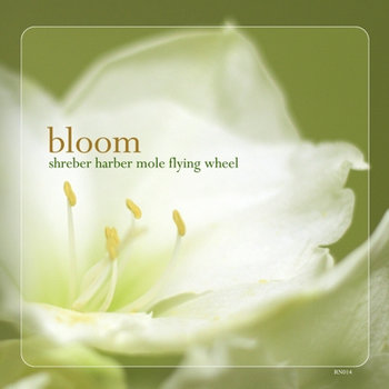 Bloom cover art