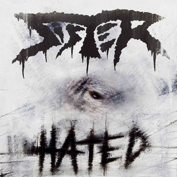 Hated - Limited Vinyl Edition cover art