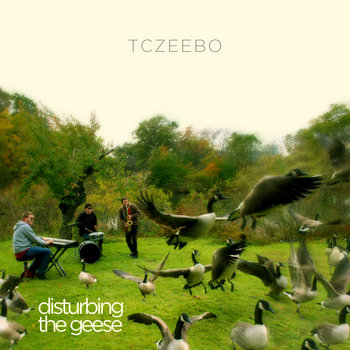 Disturbing The Geese cover art