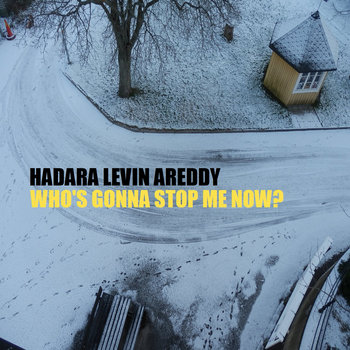 Who&#39;s Gonna Stop Me Now? cover art