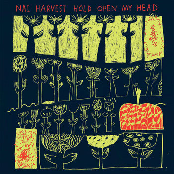 Hold Open My Head cover art