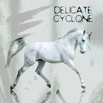 Delicate Cyclone cover art