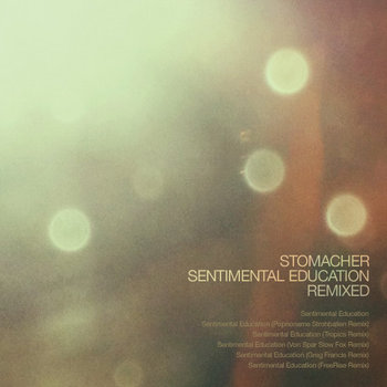 Sentimental Education Remixed cover art