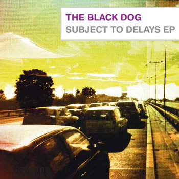 Subject To Delays EP cover art