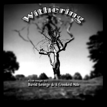 Withering/She's A Light Single cover art