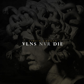 VLNS NVR DIE cover art