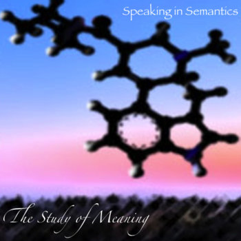 The Study Of Meaning cover art