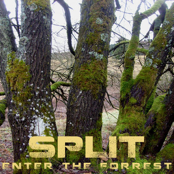 Enter the Forrest EP - Split cover art