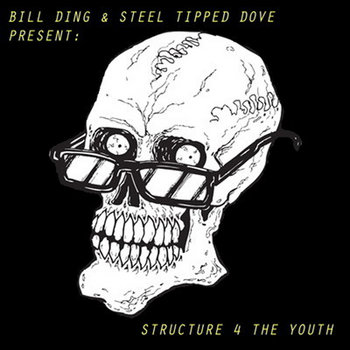 Bill Ding x Steel Tipped Dove - Structure for the Youth (album) cover art