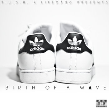 Birth of a Wave cover art