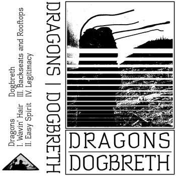 Split w/ Dragons cover art