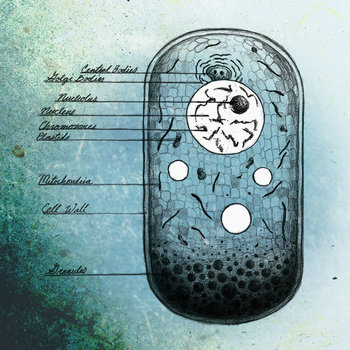 Biological Deadline cover art