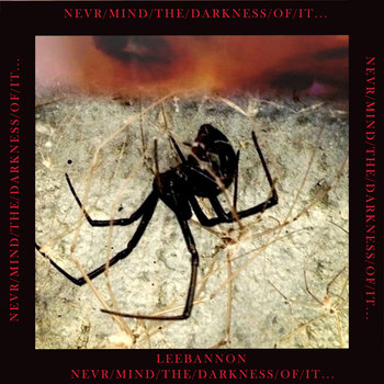 Never/mind/the/darkness/of/it... cover art