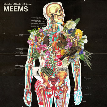 MEEMS cover art