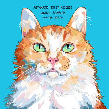 Asthmatic Kitty Digital Sampler, Winter 2014 cover art