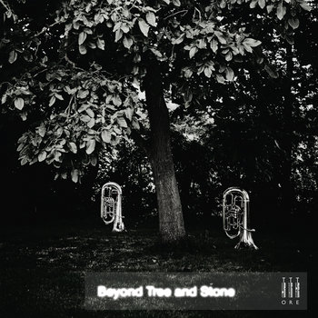 Beyond Tree and Stone cover art