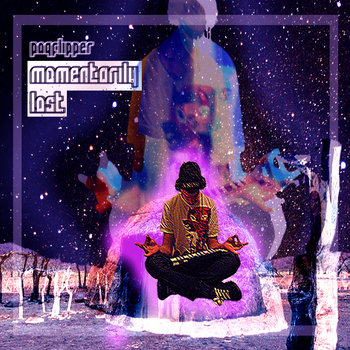 Momentarily Lost cover art