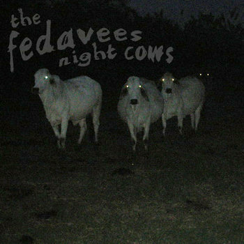 night cows cover art