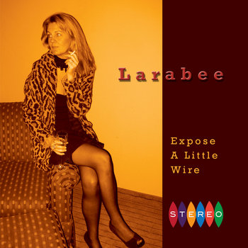Expose a Little Wire cover art