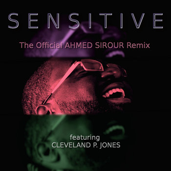 The Sensitive Suite cover art