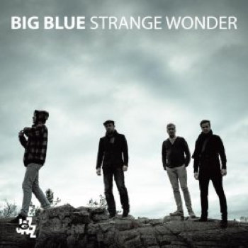Strange Wonder cover art