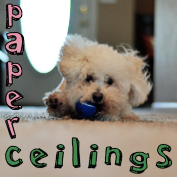 Paper Ceilings cover art