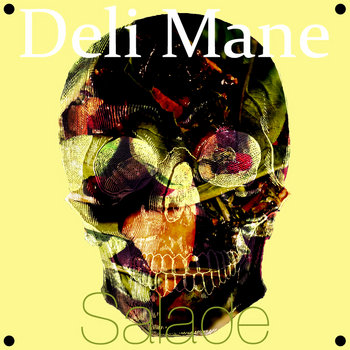 SALADE cover art