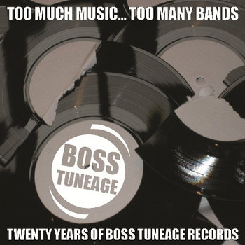 Too Much Music, Too Many Bands: 20 Years Of Boss Tuneage Records cover art