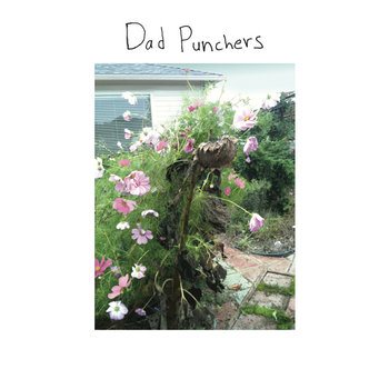 Dad Punchers cover art