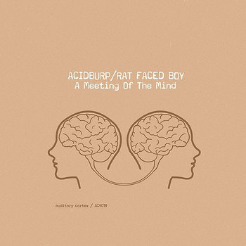 Acidburp &amp; Rat Faced Boy - A Meeting of the Mind cover art