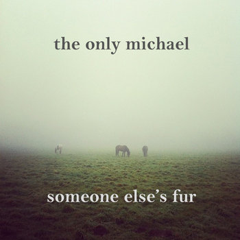The Only Michael - Someone Else's Fur cover art