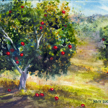 Support The Orchard cover art
