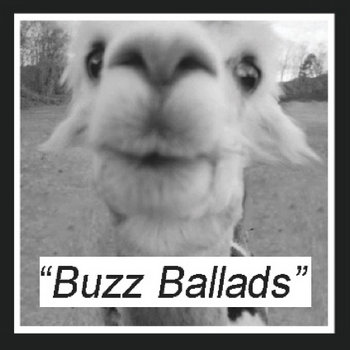 Buzz Ballads (Split w/ Falsetto Boy) cover art