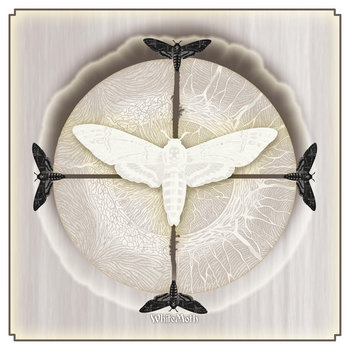 WHITE MOTH cover art