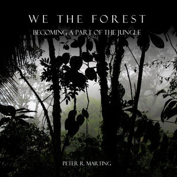 We the Forest Supplementary Audio cover art