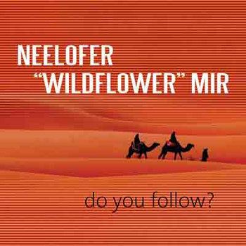 Do You Follow ? cover art