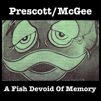 A Fish Devoid Of Memory cover art