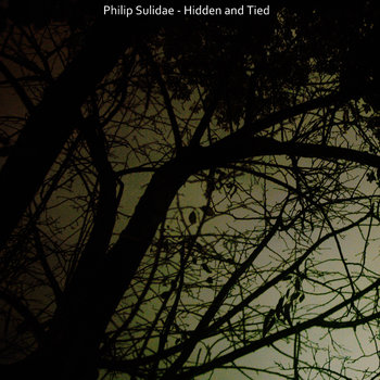 Hidden and Tied cover art