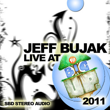 Live at The Big Up 2011 cover art