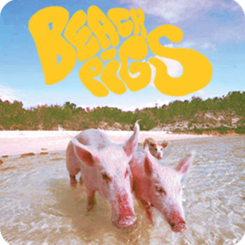 Beach pigs cover art