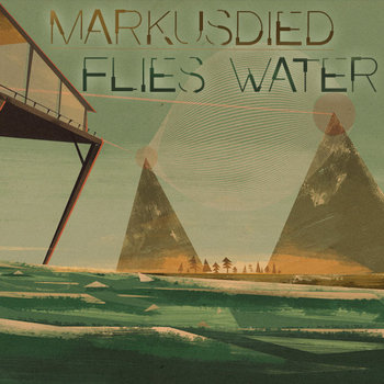 Flies Water cover art