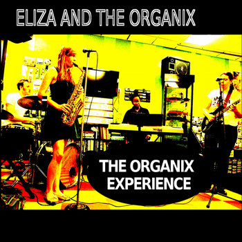 The Organix Experience cover art