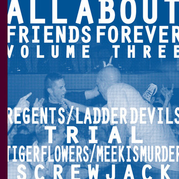 ALL ABOUT FRIENDS VOLUME VOL.3 cover art