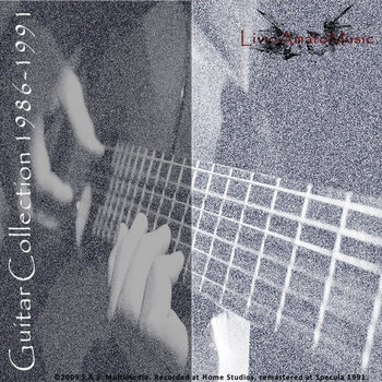 Guitar collection cover art