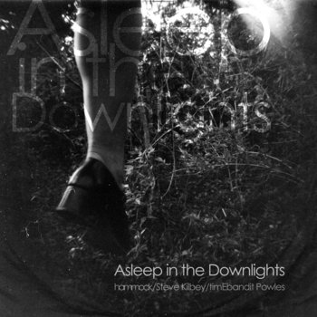 Asleep in the Downlights cover art