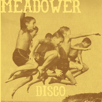 "Meadower/Cartography 7"" Split cover art"