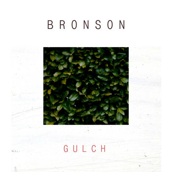 Gulch cover art